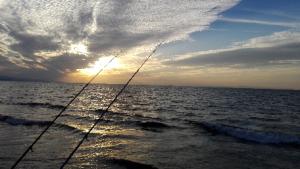 愛知海釣りマップ