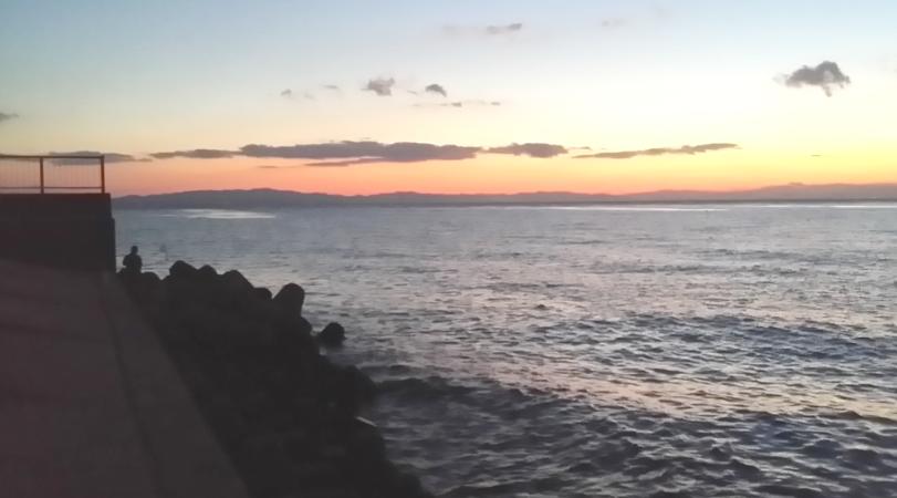豊浜漁港テトラ釣り