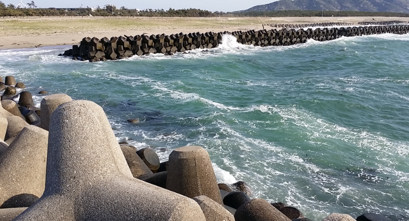 岬 釣り 伊良湖