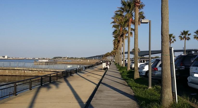 新居 海 釣り 公園